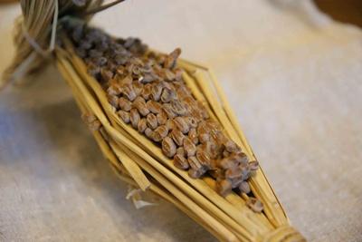 nattou-tabekata1