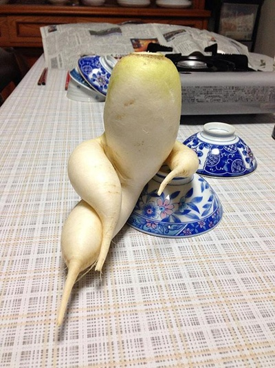 funny-shaped-vegetables-fruits-1-1