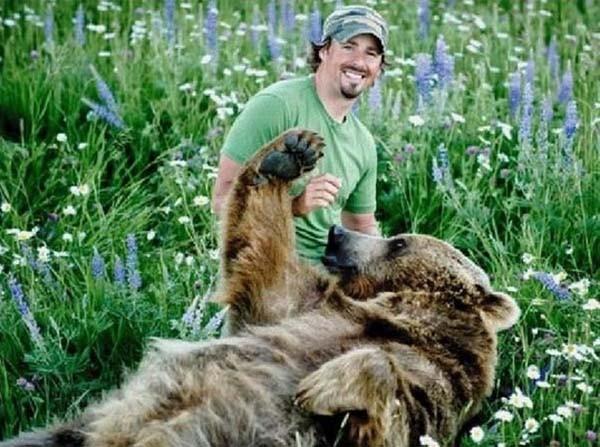 bear16-620x