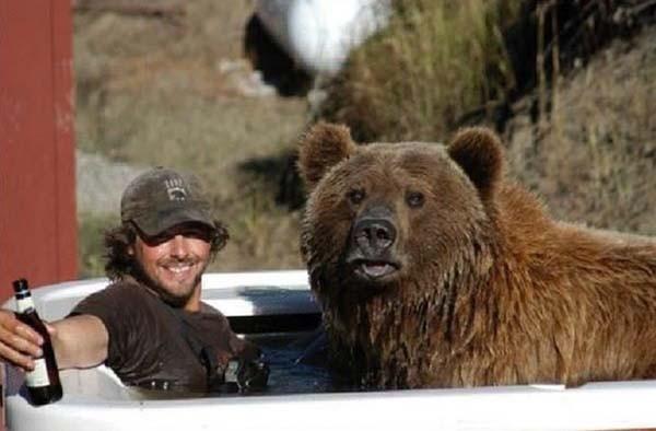 bear18-620x