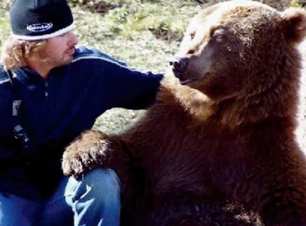 bear8-620x