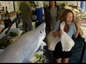 魚屋でサメが暴れだす恐怖のドッキリ