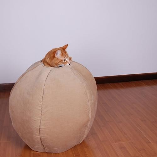 Cat_Ball_01