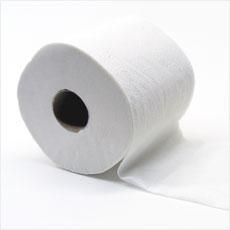 トイレットペーパーで角もしっかり密封しカビキラーを吹きかける